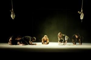 Perros Daneses Homenatge Estellés Teatre del Raval Gandia