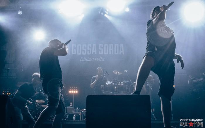 gossazoo