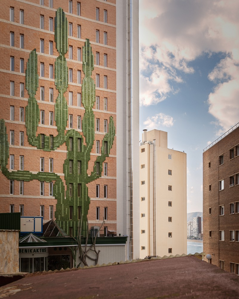 cactuspixel